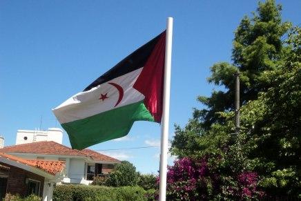 L'altra Palestina: il caso del SaharaOccidentale