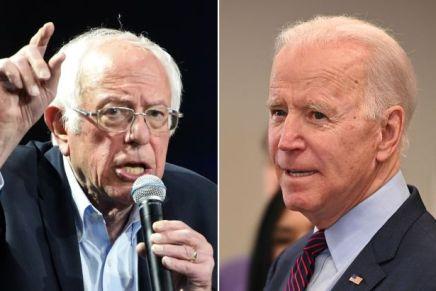 Stati Uniti: Sanders frena, Biden nuovocapolista