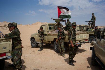 Sahara Occidentale: il popolo sahrawi pronto a lottare fino all'indipendenza