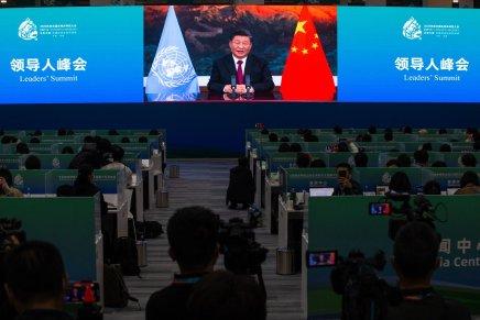"""Xi Jinping: """"Lavorare insieme per costruire una comunità di tutta la vita sullaTerra"""""""